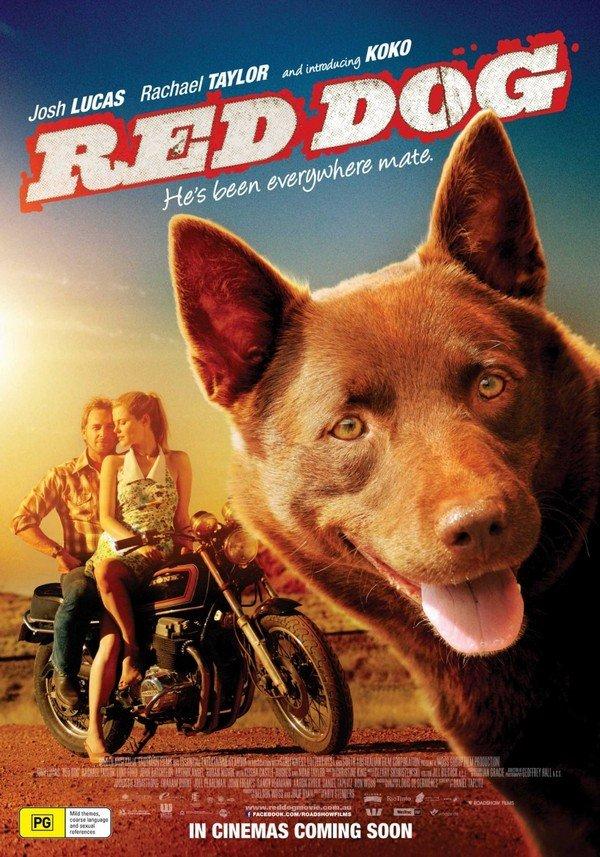 kızıl köpek