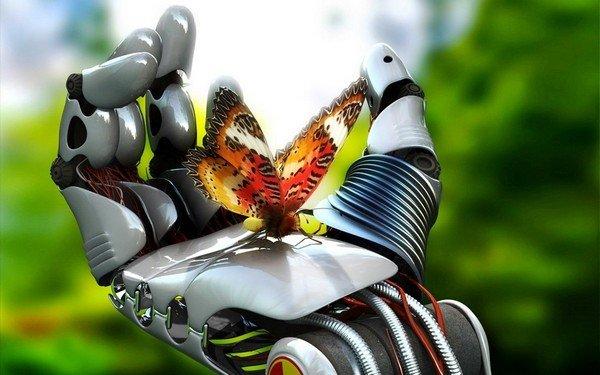 avucunuzdaki kelebek