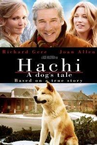 hachi, hachiko, hatchi