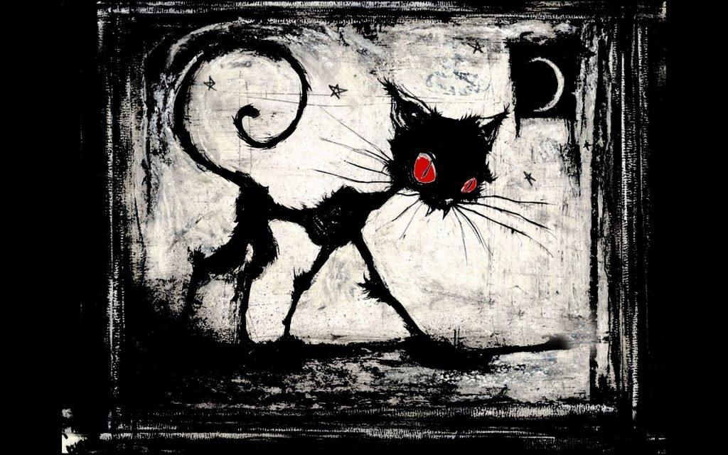 provakatör kedi
