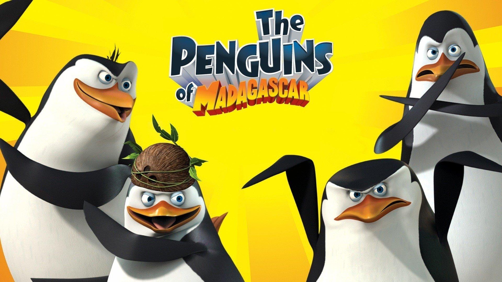 madagaskar penguenleri